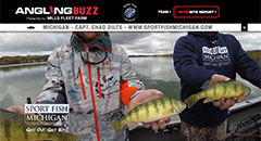 Chad Dilts - AnglingBuzzTV Fishing Report - Mid-July - Perch,perch fishing, yellow perch, michigan, fishing tackle, fishing report, expert tip, anglingbuzz