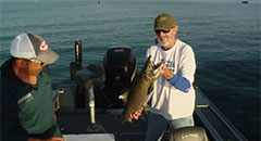 Lindner's Angling Edge - Coho Mania - Sport Fish Michigan