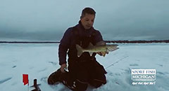 Walleye Caught on IFish Tip Up - Michigan Ice Fishing