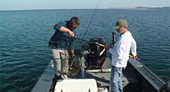 Lindner's Fishing Edge - Jiggin' Up Coho - Sport Fish Michigan