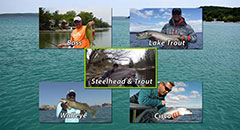 Michigan Spring Fishing with Sport Fish Michigan